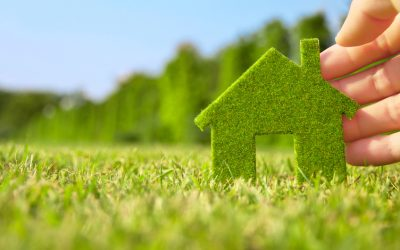 The 4 Most Eco-Friendly Materials For Your Home