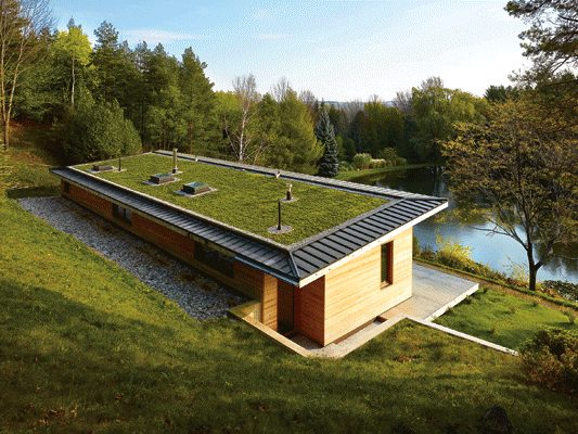 Green Roof on a healthy home
